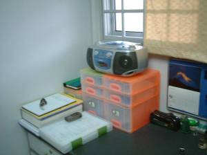 hey, see that orange storage case there below the radio? They used to belong to the place where i now put my bucket and rubbish.. and this is how 'neat' my desk looks… with my pocket Neopet within view.. just for display… don't really play with it after 1yr ago… see the books i have… it's crazy now trying my to complete this assignment which will only be due 5 weeks from now… no wonder they call me Mr. Kiasu… pengz…