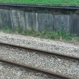 Woodland Train Checkpoint