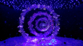 Galaxy Floristic - Judy Law Guek Chu (Singapore)