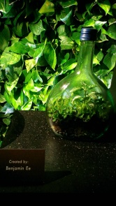 World of Terrarium - Singapore Garden Festival 2016