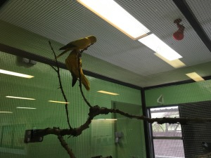 Breeding and Research Centre